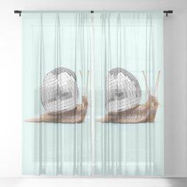 DISCO SNAIL Sheer Curtain