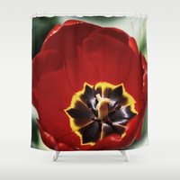 tulip Shower Curtains featuring Tulip by Charlene McCoy