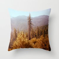 oregon Throw Pillows featuring Oregon by Richard PJ Lambert