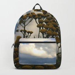 Mirror Lake  Backpack