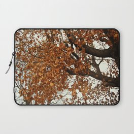 Colors Thriving As The Leaves Are Dying Laptop Sleeve