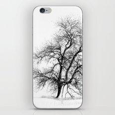 Winter White iPhone & iPod Skin