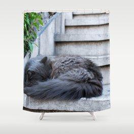 Ash Cat. Shower Curtain