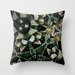 Succulents on Show No 1 Throw Pillow