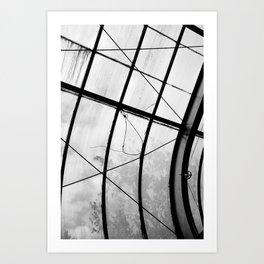 Greenhouse ceiling Art Print