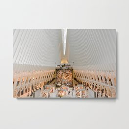The Oculus Wide Metal Print