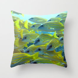 Yellow-striped fish Throw Pillow