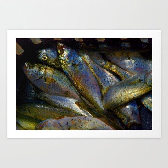 Baby Bluefish Art Print