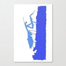 Blue Praying Mantis Canvas Print