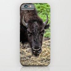 The Bison Stare iPhone 6s Slim Case