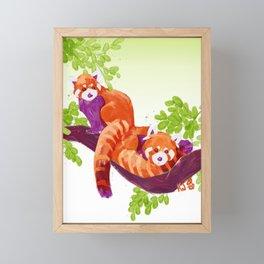 Red Pandas Framed Mini Art Print