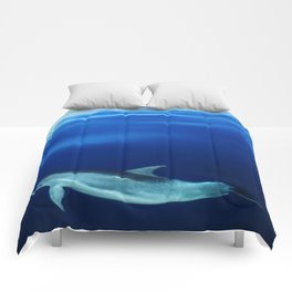 Dolphin and blues Comforters