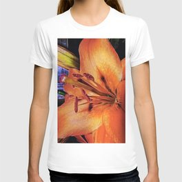 Lily Gold T-shirt