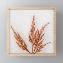 Iceolatia Framed Mini Art Print