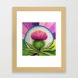 Scottish Thistle Framed Art Print