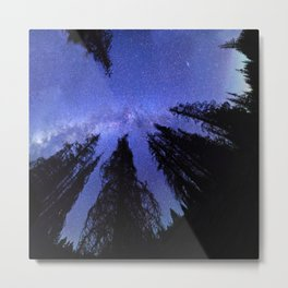 Celestial Starlight In The Forest Near Lake Irene Colorado Metal Print
