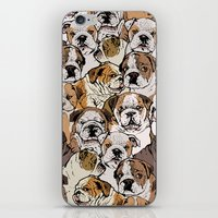 english bulldog iPhone & iPod Skins featuring Social English Bulldog by Huebucket
