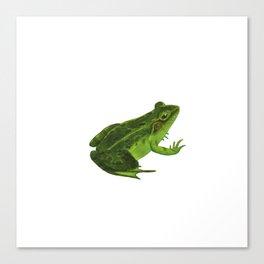 Frog nature drawing green art print Canvas Print