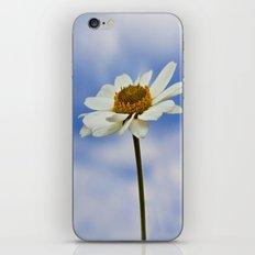 Daisy Daisy II iPhone & iPod Skin