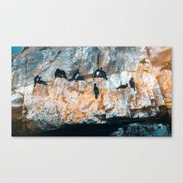 Biontro I Canvas Print