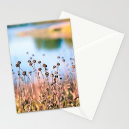 Illinois Fall Seeds Stationery Cards