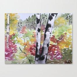 Birch Tree in Autumn Canvas Print