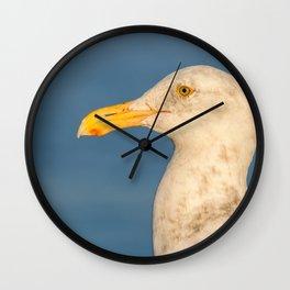 Western Gull Wall Clock
