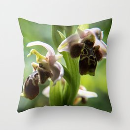 Cyprus Bee Orchid II Throw Pillow