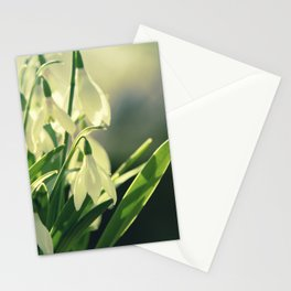 Snowdrops impression from the garden Stationery Cards