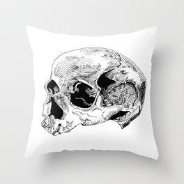 Dry Throw Pillow