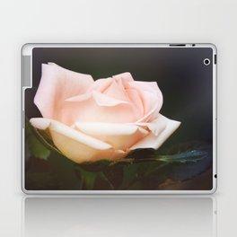 Ever Unfolding Laptop & iPad Skin