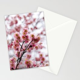 The First Bloom Stationery Cards