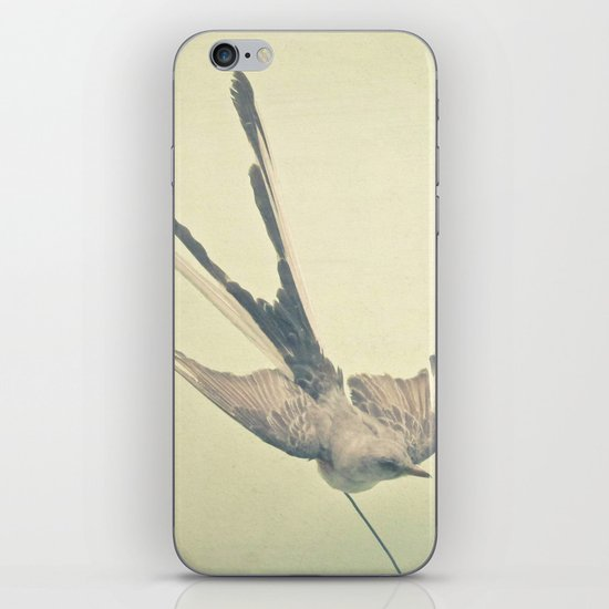 Bird Study #1 iPhone & iPod Skin