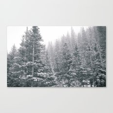 Snowing on the Mountain Canvas Print