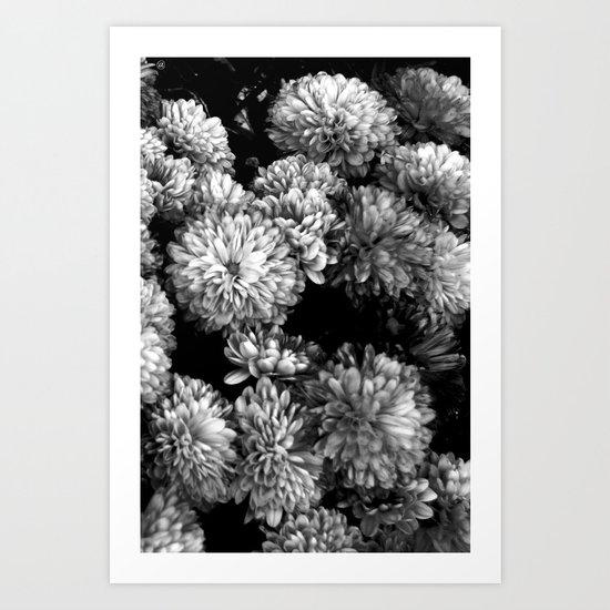 white gold (w/straight border) Art Print