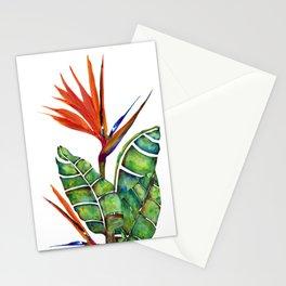 Bird of Paradise Botanical Stationery Cards