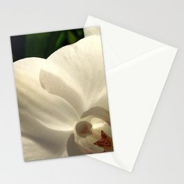 low light white Stationery Cards