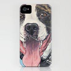 Pit Bull  iPhone (4, 4s) Slim Case