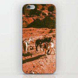 Caravan in Jordan Desert - Donkeys iPhone Skin
