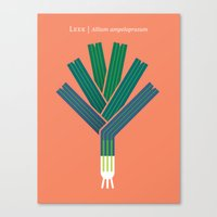 vegetable Canvas Prints featuring Vegetable: Leek by Christopher Dina