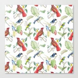 Birds #7 Canvas Print