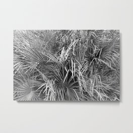 Fan Palm Fronds Greyscale Abstract Metal Print