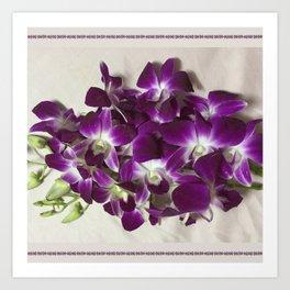 Thai Orchid - Dendrobium Cut Flower Art Print