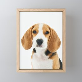 Beagle Dog Framed Mini Art Print
