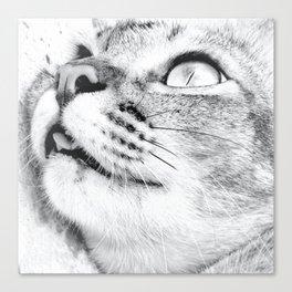 Choked Canvas Print