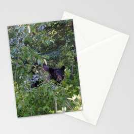 Mother bear hides in the trees- Canadian Rocky Mountains Stationery Cards