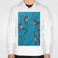 converse Hoodies featuring Sparrows Converse by Suzy Kitman Fine Art