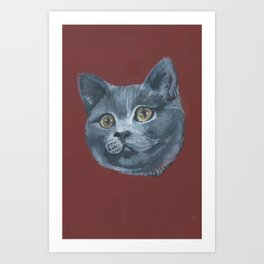 Grey Gray Cat Kitten Head Green Eyed Art Print
