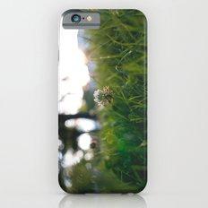 queen. Slim Case iPhone 6s