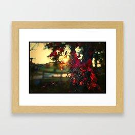 a new morning Framed Art Print